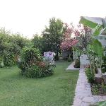 Part Of Lush Grounds