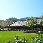 Hester Creek Estate Winery