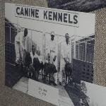 The kennels