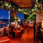 Scarlett Wine Bar & Restaurant_Terrace