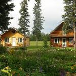 Our new cabins overlook the gardens