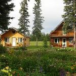 Our cabins