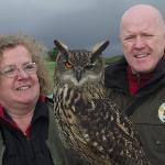 a winking European Eagle Owl
