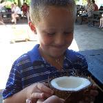 Getting a taste of fresh coconut