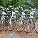 The Bikes We Booked