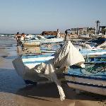 pescherecci spiaggia