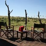 Relaxing on the deck, spot giraffes, hippos, elephants