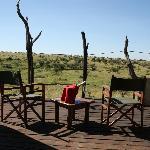 Relaxing on the deck, spot giraffes, hippos, elephants