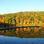 Pounds Hollow Lake is 2 mile from cabins on foot or by road