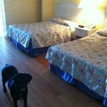 2 full sized beds in the bedroom area upon entering door.