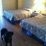 2 full sized beds in the bedroom area upon entering door.