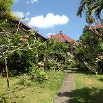 view around the bungalows