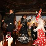 Photo de Tablao Flamenco Villa Rosa