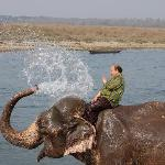 Elephant bath can be seen from this hotel