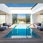Roof Garden Suite Pool