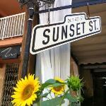 Photo of Sunset St.