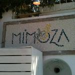 Mimoza restaurant