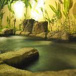 In Villa Jacuzzi with Nature Hot Spring