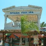 Fish spa for those rough feet