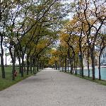 The path along the lake during the fall
