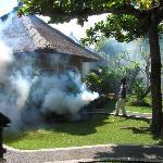 Fumigando la villa