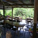 The beautiful dining room outside where they lay out bananas for the exotic birds to eat
