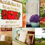 Kealakekua Bay Bed and Breakfast