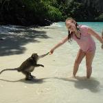 Feeding a monkey.