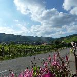 entrance village of Riquewihr by car