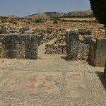 A visit to Volubilis