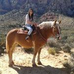Holly, the lovely horse I got for the ride!