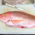 Fresh local caught Yellow Eye Snapper