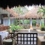 view from buffet dining area
