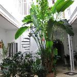 Interior patio.