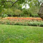 Dow Garden Flower Bed