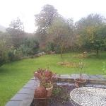 Garden . Spot the wildlife