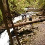 Fiery Gizzard creek plunging into Black Canyon Fiery Gizzard trail