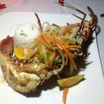 Lobster by the reef