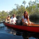 Canoeing on the Noosa Everglades