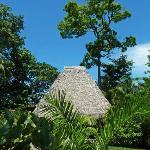 Congo Bungalow