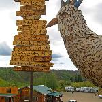 """""""Mr. Eggee"""" and the chicken signpost overlooking the Chicken Creek Outpost at Chicken Gold Camp"""