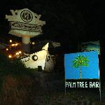 The outside of hotel and the palm tree bar sign