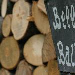 legna per l'inverno..