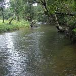 Stream adjacent to resort