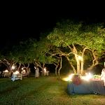 Buffet Dinner served on Safari Lodge's Lawns