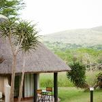 View from Safari Lodge's Room