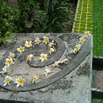 Leelawadii flowers on hotel's logo sculpture