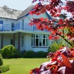 Blue Conifer - Bed and Breakfast in Torquay