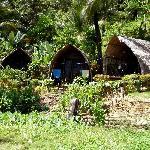 Standard cottages