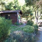 Cabin 15 at Ripplewood